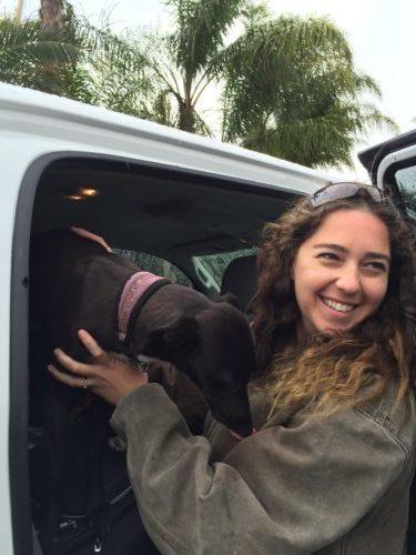Civon the dog lover