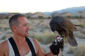David Kanellis. Recycled Pigeon
